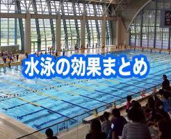 水泳 効果