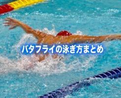 バタフライ 泳ぎ方