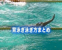 背泳ぎ 泳ぎ方