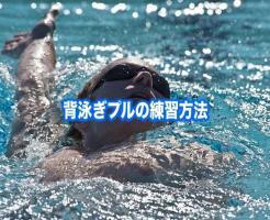 背泳ぎ プル